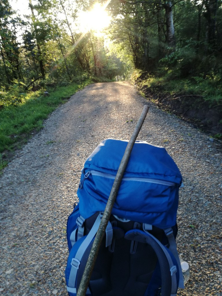 a_huge_blue_backpack_lying_on_a_mountain_trail