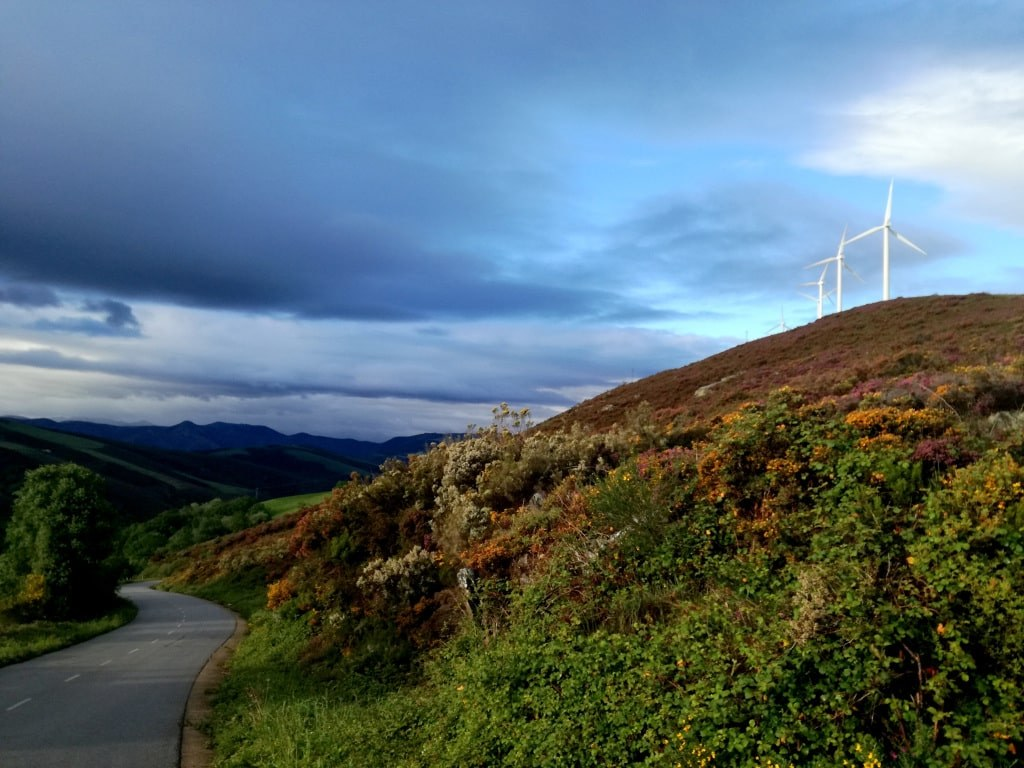 two_windmills_waving_on_a_top_of_a_hill_covered_with_colorful_plants