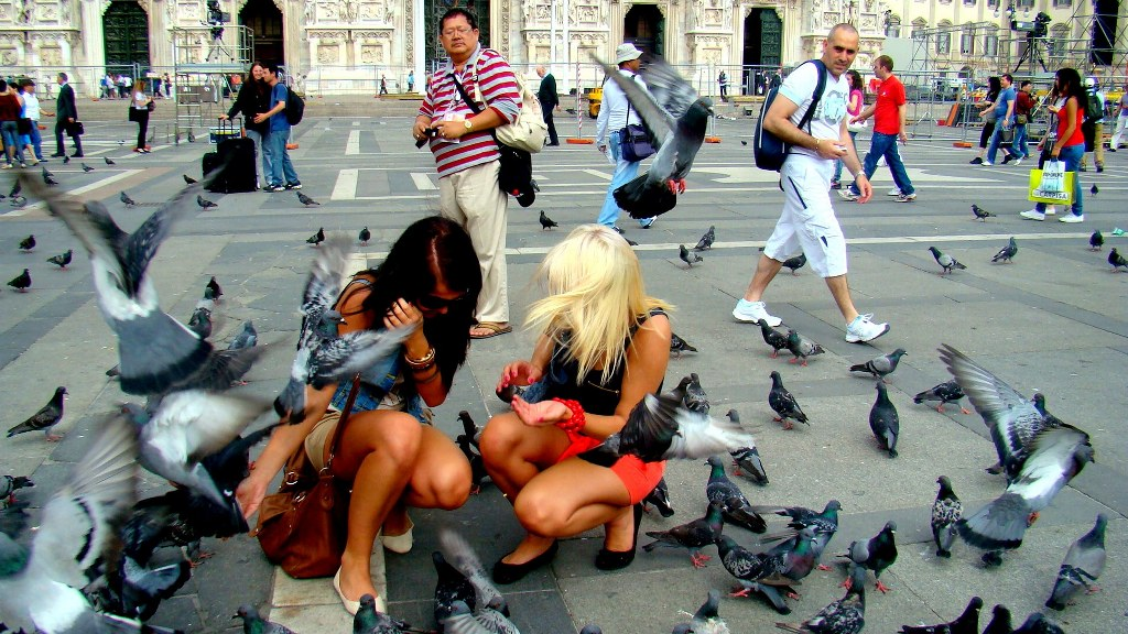 a_square_in_milan_with_tourists_and_doves