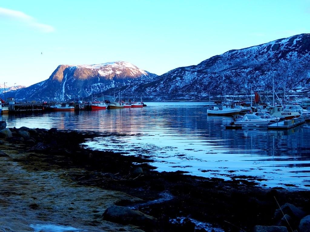 frozen_harbour_view