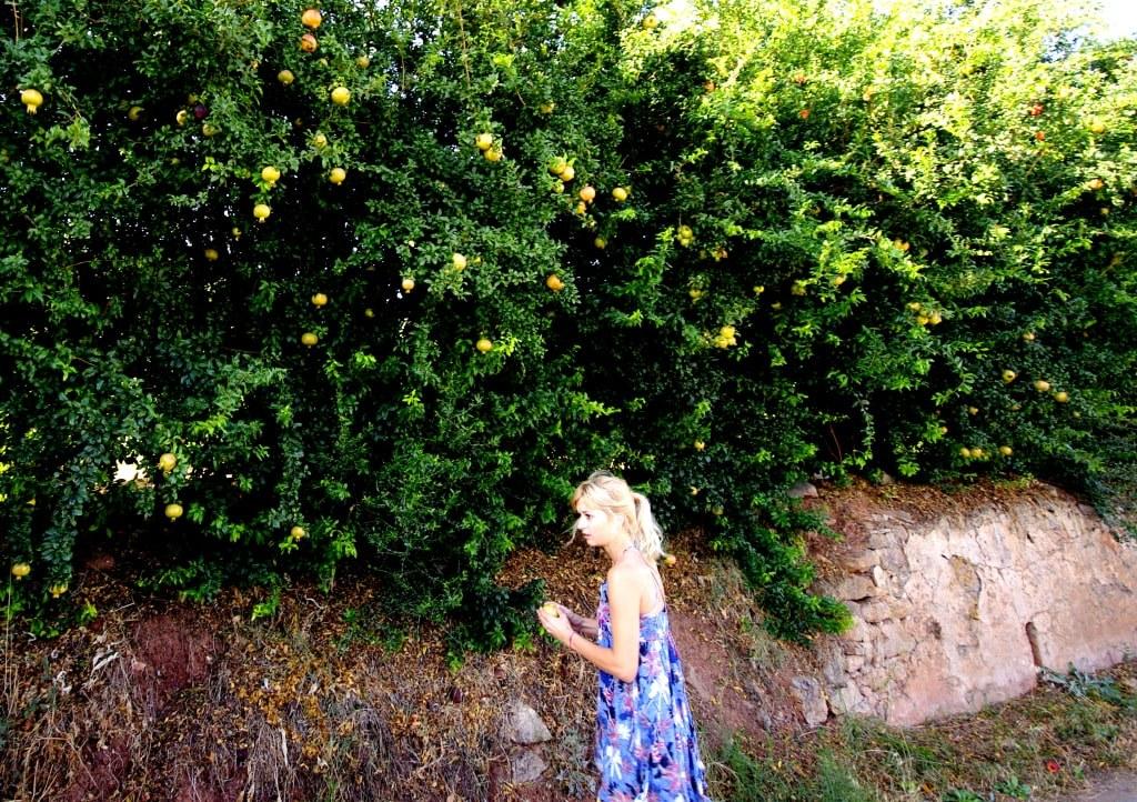 a_blonde_girl_eating_a_fresh_orange