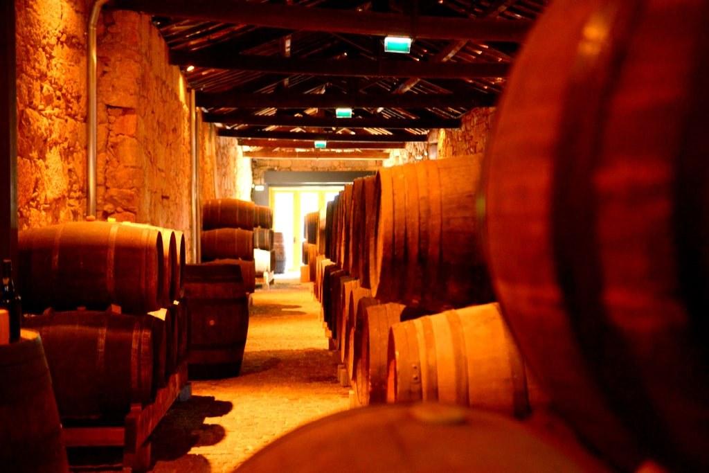 a_cellar_with_wine_barrels