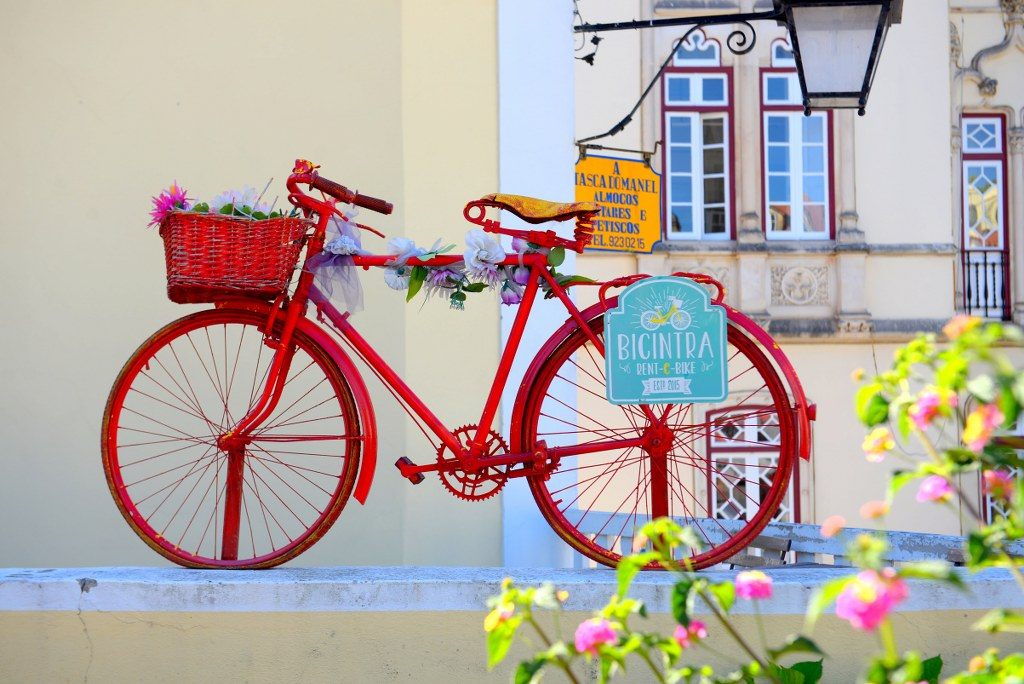 a_red_bicycle_surrounded_by_floral_composition