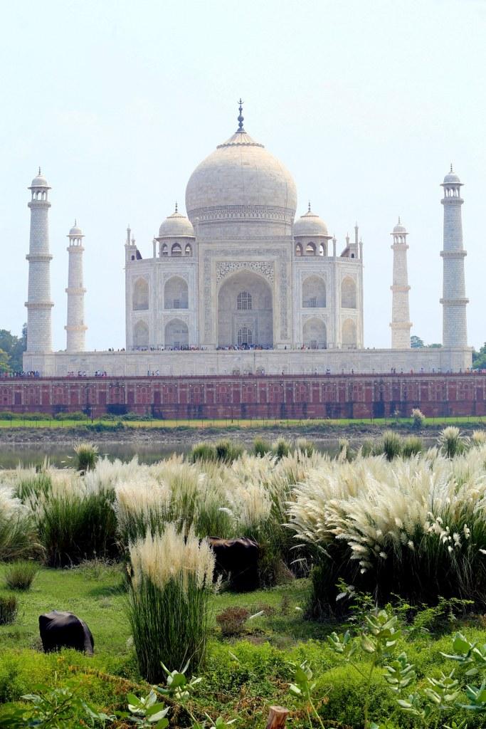 taj_mahal_in_agra_in_india