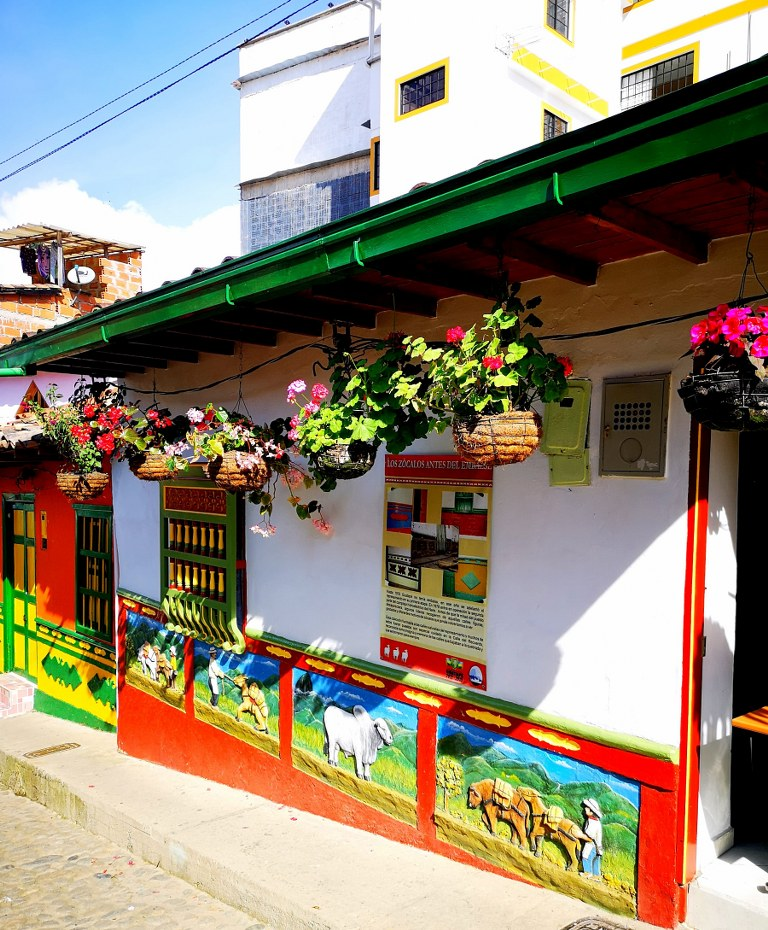 colorfully_decorated_house_with_dozens_of_flowers