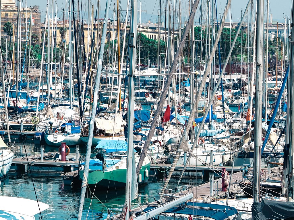 dozens_of_yachts_moored_in_a_harbour