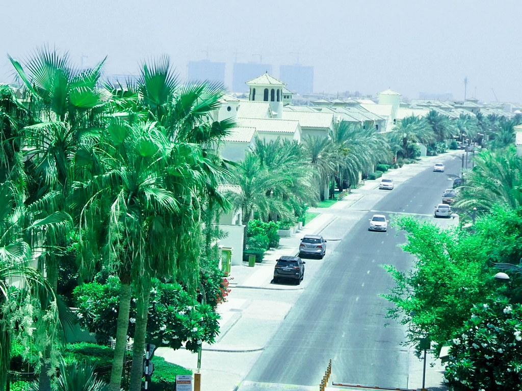 palm_tree_area_in_dubai