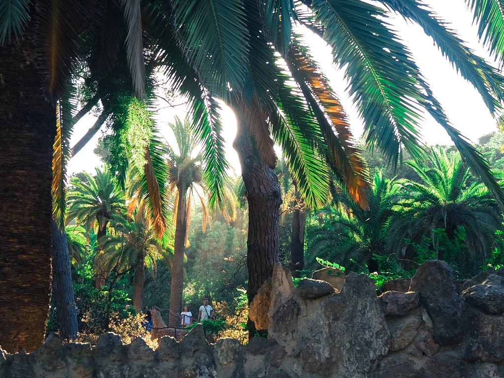 park_guell_in_barcelona