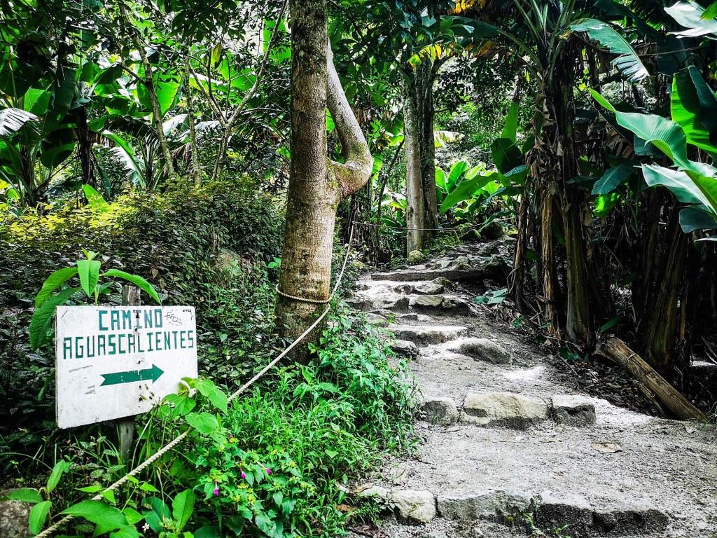 inca_trail_leading_to_aquas_calientes