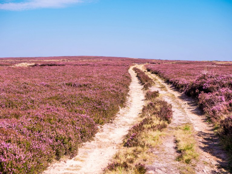 the_most_amazing_british_national_park