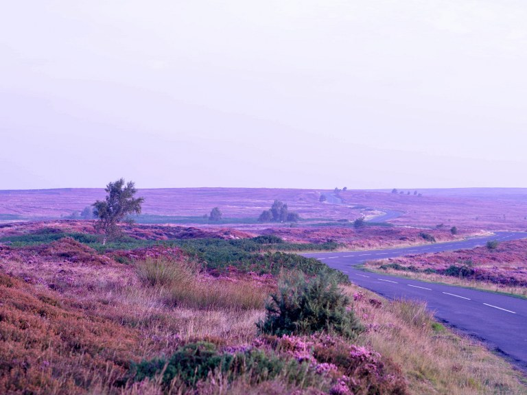 the_yorkshire_moors_national_park