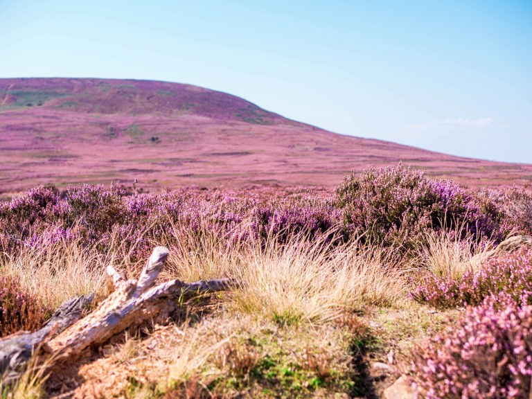 the_yorkshire_national_park