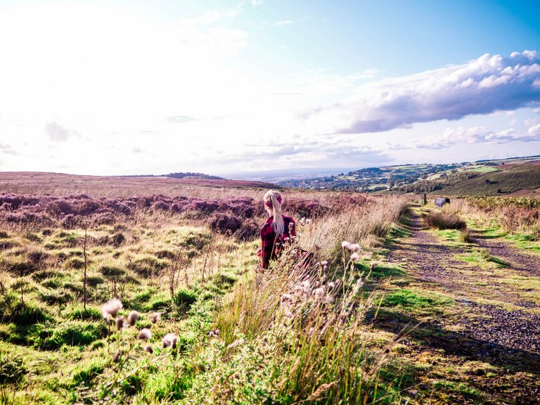 yorkshire_moors_park_in_the_uk