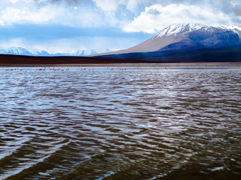 laguna-colorada-boliwia-altiplano