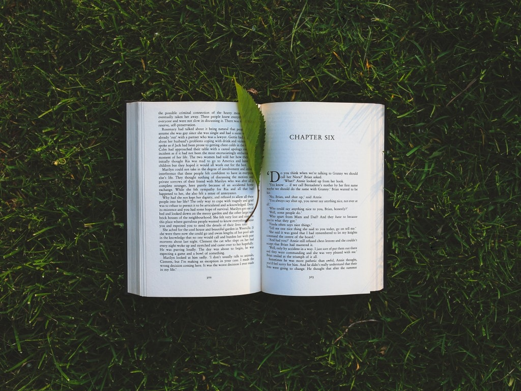 a book on a grass with a leaf as a bookmark