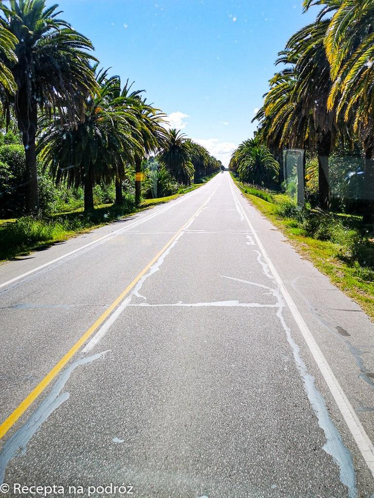 straight-road-in-uruguay