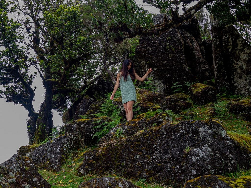 a_long_hair_girl_in_a_green_dress_posing_in_front_of_an_old_huge_tree