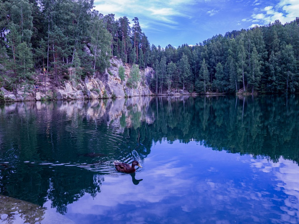 a_forrest_lake_in_rocky_city