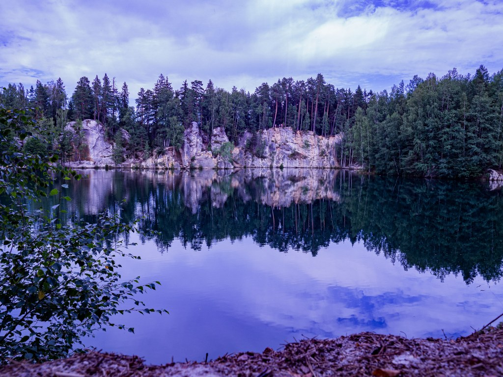 trees_and_rocks_reflecting_in_a_water_surface
